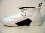 Mike Bibby Air Jordan XV